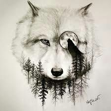 Alpha wolf tattoo design is part of The Best Wolf Tattoos For Men Improb - Wolf and the Moon Easy Pencil Drawings, Wolf Eye Drawing, Cool Wolf Drawings, Animal Drawings, Drawings Of Wolves, Wolves Art, Tattoo Sketch, Tattoo Drawings, Art Drawings