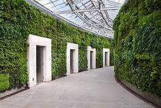 Green Wall designed by Ambius at Longwood Gardens East Conservatory in Kennett Square, PA - http://www.ambius.com/large-projects/client-portfolio/longwood-gardens/index.html