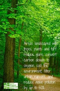 Areas landscaped with trees, plants and turf reduce glares, convert carbon dioxide to oxygen, cool the environment, filter urban run-off, and reduce noise pollution by up to 50%.