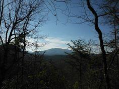 Meigs Mountain Trail and Lumber Ridge Trail