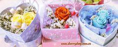 hoa hồng xanh magic
