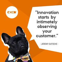 Businesses looking to innovate or revitalise their brand need to start by intimately observing their customers to better understand them.