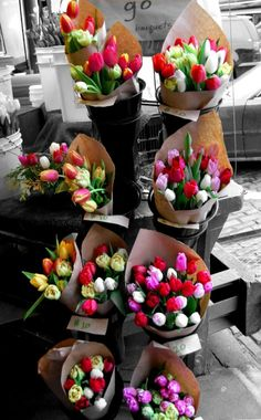 Tips voor tulpen
