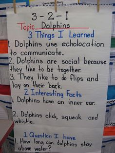 Teaching With Love and Laughter: Search results for dolphin