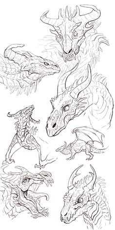 Animal Sketches, Animal Drawings, Art Sketches, Creature Concept Art, Creature Design, Dragon Anatomy, Dragon Sketch, Dragon Artwork, Mythical Creatures Art