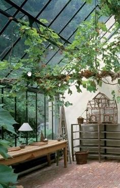 Conservatory Inside The Greenhouse Growing Plants Indoors, Grow Lights For Plants, Growing Vegetables, Greenhouse Supplies, Greenhouse Ideas, Homemade Greenhouse, Backyard Greenhouse, What Is A Conservatory, Conservatory Design
