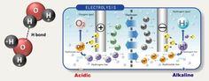 water ionized - Pesquisa Google