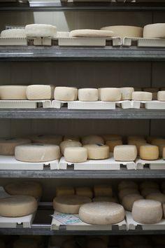 Cheese anyone?? My dream pantry!!