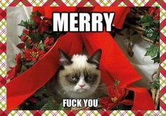 Grumpy Cat  Merry... Fuck You