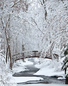 """Winter Beauty"" by Garen Johnson"