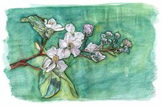 banners - © Verónica Melo Verona, Facebook Banner, Illustration, Painting, Art, Art Background, Painting Art, Kunst, Paintings