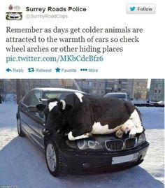 Cold weather advice from Surrey Police