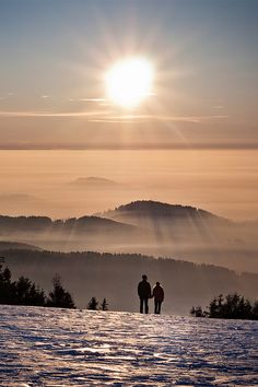 Towards the Light - Schwarzwald, Germany (by Andreas Wonisch)