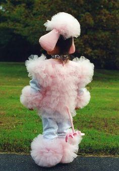 Poodle costume back