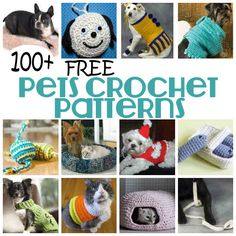 <p>Make a sweater, toy and more for your dog, cat and other pets with our collection of 100+ Free Pets Crochet Patterns. You might also like:T-Shirt Yarn Dog Rug and Chew Toy Free Crochet PatternCrochet Dog Leash PatternDIY Dog CoatKittens in a Row Scarf Crochet PatternLittle Dog Harness Sewing Tutorial</p>