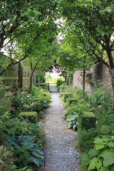 stone path through a leafy garden . . .