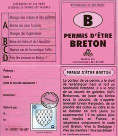 Breizh Ma Bro, Hetalia, Brittany, Inventions, Jokes, Coding, Web Design, Lol, Color Codes