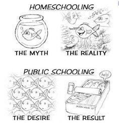 More homeschooling...