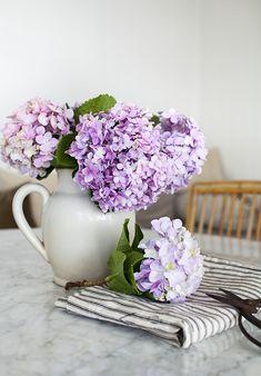 Hydrangeas on the kitchen table