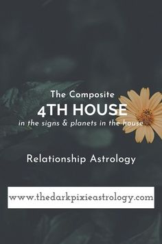 Learn Astrology, Love Astrology, Astrology Compatibility, Relationship Astrology, Astrology Houses, Yearly Horoscope, Thing 1 Thing 2, The Darkest, Planets