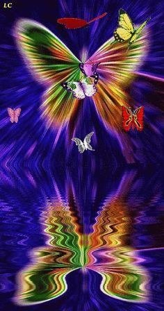 Pinimg Gifs Butterfly | gif s fυɳƙყ butterfly beauty gif gif s trippy butterflies gif ...