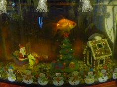1000 images about christmas fish tank on pinterest fish for Aquarium christmas tree decoration