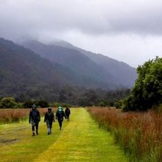 Stormy skies on the Hollyford Track #tramping #newzealand