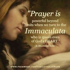 """(via Deo Gratias. Maximillian Kolbe - """"Prayer is powerful beyond limits when we turn to the Immaculata who is queen even of God's Heart. Catholic Religion, Catholic Quotes, Catholic Prayers, Catholic Saints, Religious Quotes, Roman Catholic, Religious Images, Blessed Mother Mary, Blessed Virgin Mary"""