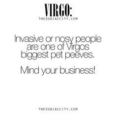Virgo has a big pet peeve with nosy people. Virgo Libra Cusp, Virgo Traits, Virgo Love, Virgo Sign, Zodiac Signs Virgo, Virgo Horoscope, Leo And Virgo, Zodiac City, Zodiac Facts