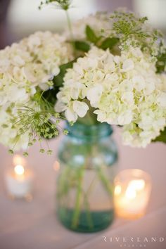 White hydrangea flowers in clear green mason jars