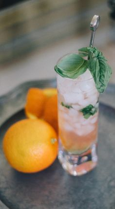 The Orange & Basil F