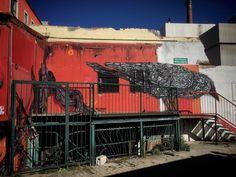 Crow ... //  Oliver Haaker // www.haaker.photo // #munich #muenchen #münchen #muc #bavaria #visitbavaria #hiddenmunich #bayern #streetsofmunich #igersmunich #igersmuenchen #pictures #photography #huffpostgram  #haakerphoto #instagram #instastyle #picofthe