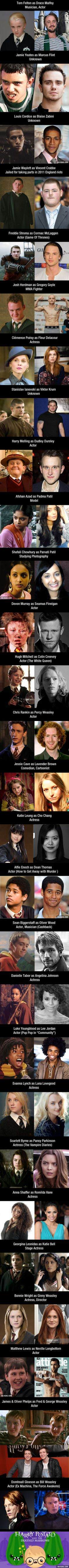 """Harry Potter"" Schoolmates: Then and Now"