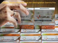 Vitaplas, Herbal Untuk Menjaga dan Meningkatkan Stamina Pria