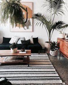 living room home indoor plants striped rugs wall art minimal boho paintings white walls