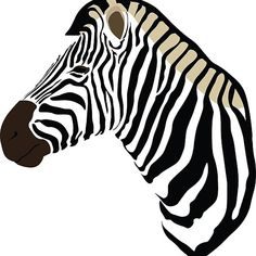 Illustration of a Zebra's head, available on redbubble!