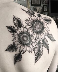 Sunflowers for lovely Charlotte's first tattoo. Thankyou again for travelling to see me lovely