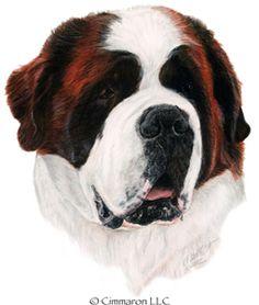 Cimmaron Dog Art creates art work, t shirts, and decals for all breeds of dogs including corgis,irish setters and vizslas. Mastiff Dogs, Vizsla, All Breeds Of Dogs, St Bernard Dogs, Irish Setter, Dogs Golden Retriever, Dog Art, Pet Portraits, Corgi