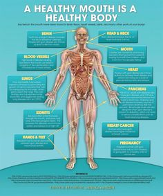 a healthy mouth is a healthy body poster via dental hygiene with kara rdh..purchase here: http://www.zazzle.com/oral_hygiene_dental_poster-228331683933679327