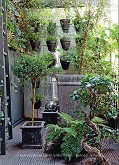 Vertical Garden | Modern Natural Urban Home | Inside = Outside | Contemporary Design | Nature #nakedenvironment