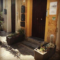 agrigento B&B Anaka info www. B & B, Plants, Instagram, Flora, Plant, Planting