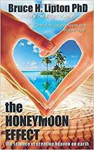 The Honeymoon Effect: The Science of Creating Heaven on Earth Biology Of Belief, Bliss, Stem Cell Research, Believe, Great Books To Read, Journey, Higher Learning, Electronic, Lipton