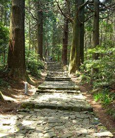 【和歌山】熊野古道