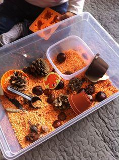 bac sensoriel automne - lentilles corail