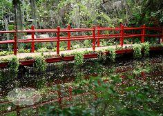 Red Bridge Magnolia Plantation South Carolina by kellynphotography, $12.00