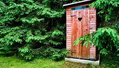 5 проверенных способов, как избавиться от запаха в дачном туалете | дачные хитрости