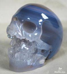Agate Geode Crystal Singing Skull http://www.skullis.com/Druse-Skulls-1.html