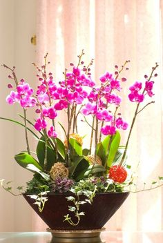 Best Garden Decorations Tips and Tricks You Need to Know - Modern Beautiful Flowers Garden, Pretty Flowers, Silk Flowers, Cymbidium Orchids, Pink Orchids, Amazing Gardens, Beautiful Gardens, Happy Name Day, Orchid Arrangements