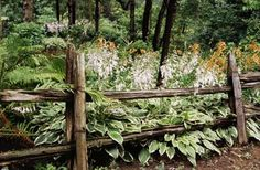 How To Make A Rustic Wood Fence