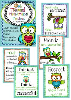 """Just look what buyers have said,""""What a wonderful set! I love the colors and graphics, but especially, the messages on them! Owl Classroom Decor, Classroom Setup, Preschool Classroom, Future Classroom, Classroom Organization, Classroom Management, Classroom Teacher, Classroom Environment, Behavior Management"""
